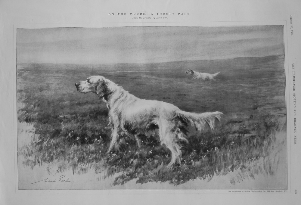 On the Moors. - A Trusty Pair. 1909
