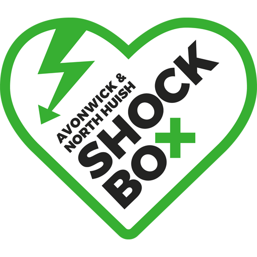 Avonwick and North Huish Shock Box