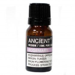 Ancient Wisdom Essential Oil ~ Rosemary