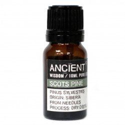Ancient Wisdom Essential Oil ~ Scots Pine