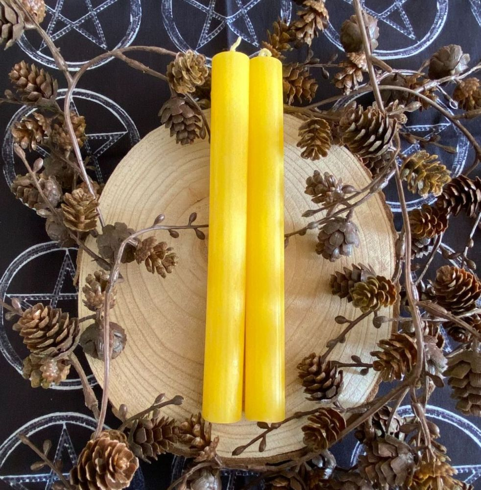 Dinner Candle ~ 20cm Yellow