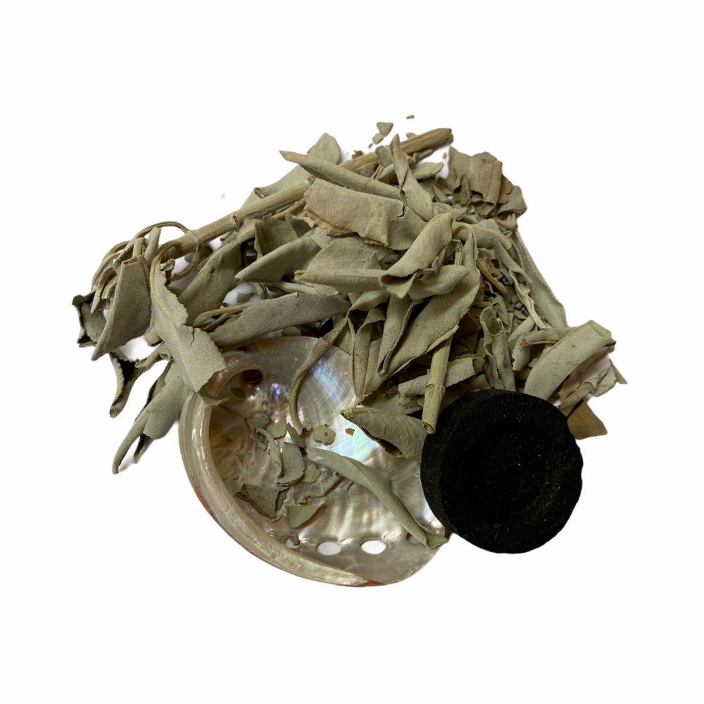 Smudging Set with White Sage, Charcoal Disc and Abalone Shell