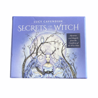 Secrets of the Witch by Lucy Cavendish