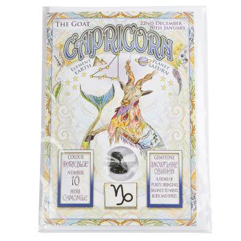 Zodiac Greeting Card with Crystal ~ Capricorn