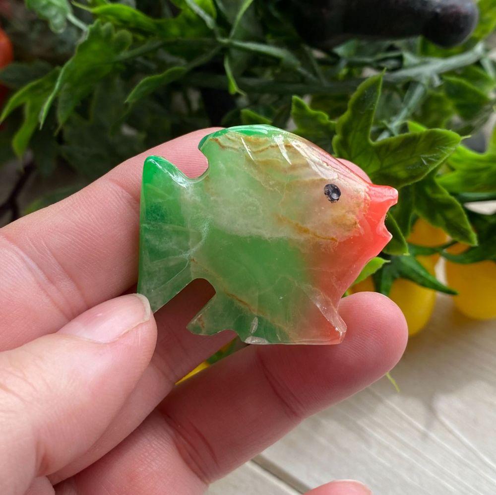 Rainbow Onyx Fish #3