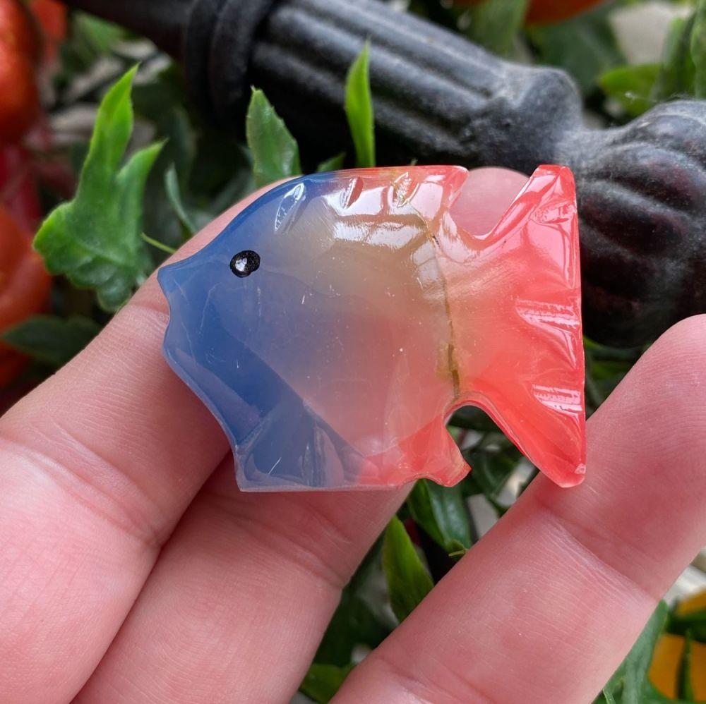 Rainbow Onyx Fish #E