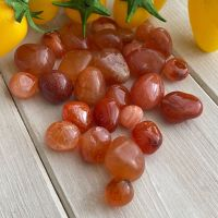 Carnelian ~ Small ~ Pack of 5