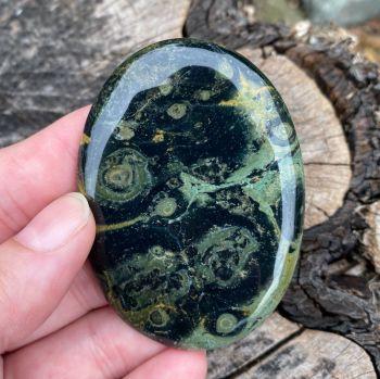 Kambaba Jasper Palm Stone #A1