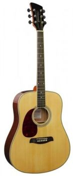 BRUNSWICK DREADNOUGHT NATURAL LEFTHANDED     BDL200