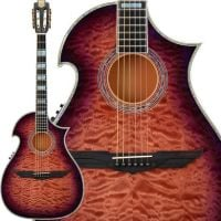 Acoustic Steel String Guitars