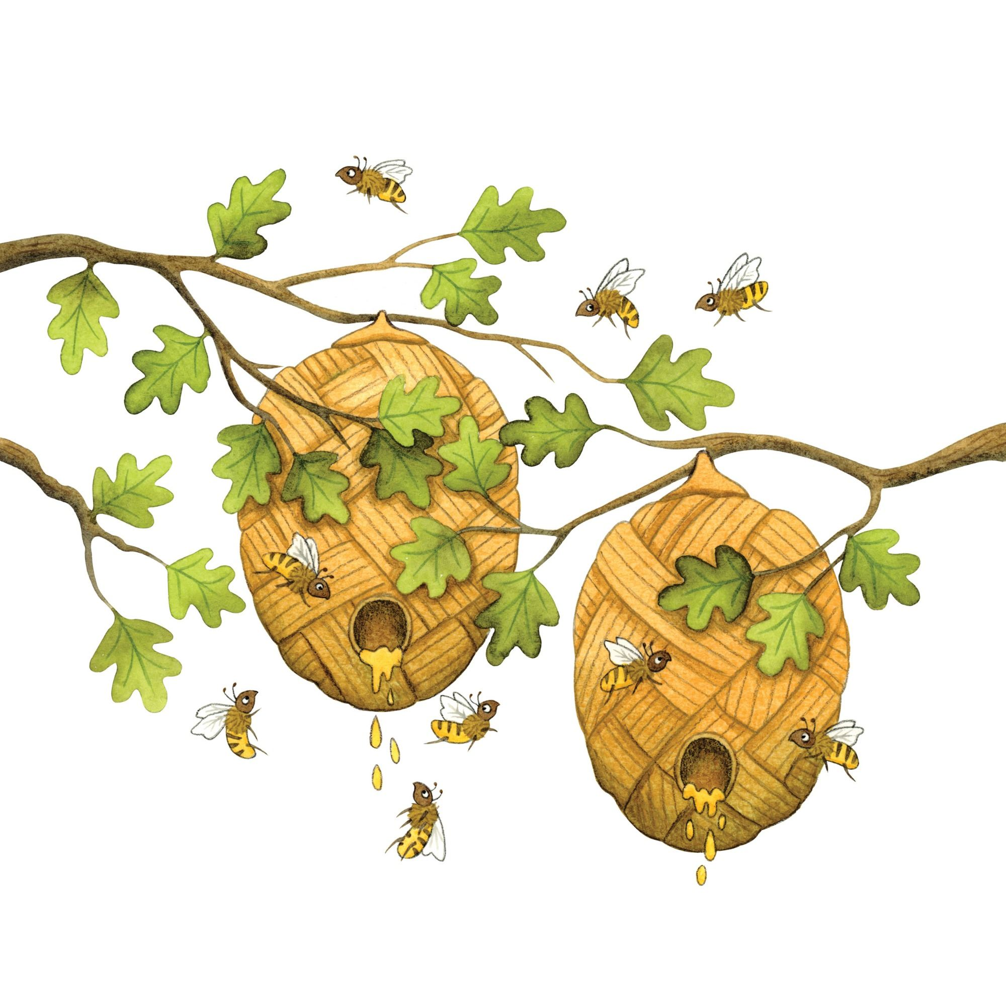 Honey bees illustration