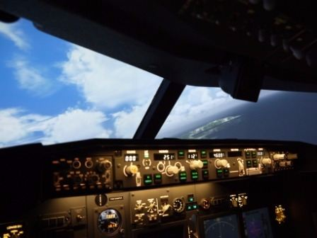60 Minute Flight Simulator Experience