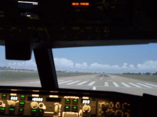 30 Minute Flight Simulator Experience