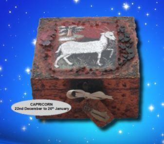 Capricorn Zodiac Box sistersofthemoon.org.uk