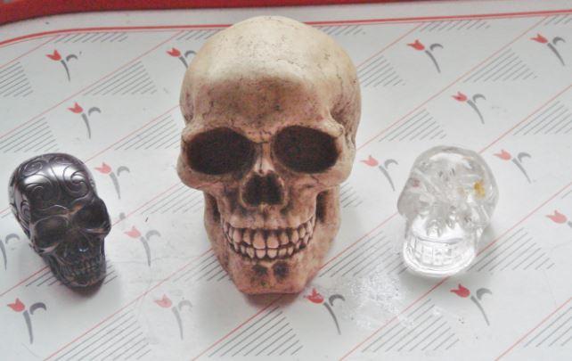 skulls sistersofthemoon.org.uk (2)