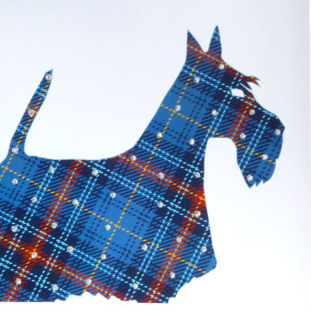 Dog | Scottie Blue Tartan