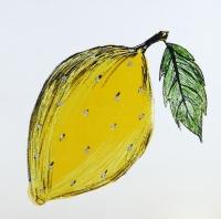 Fruit | Lemon