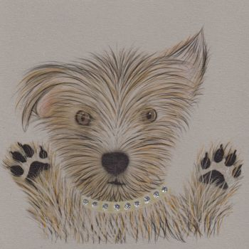 Dog   Glitter Scruffy Paws, clay