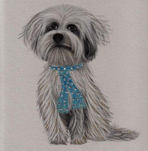Dog | Glitter Tibetan Terrier, clay