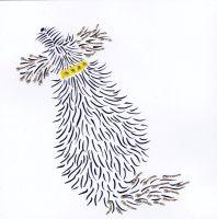 Dog | Bella