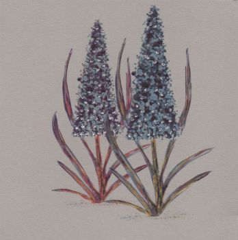 Flowers | Purple Lupin, clay