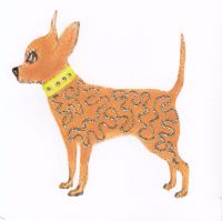 Dog | Glitter Chihuahua