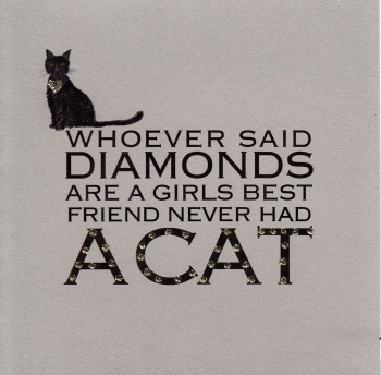 Witty Words | Diamond Cat, clay