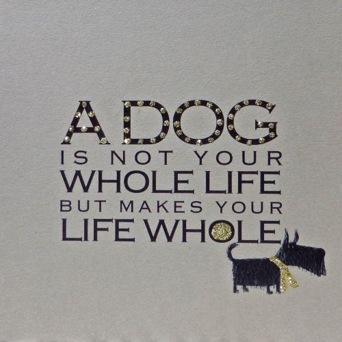 Witty Words | A Dog is... clay
