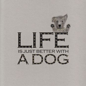 Witty Words | Life is better with a dog