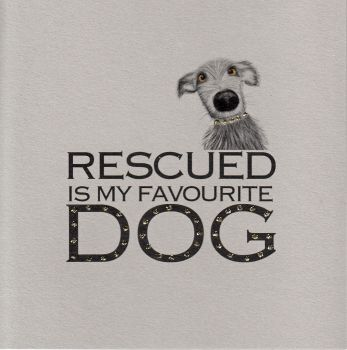 Witty Words | Rescue Dog, clay