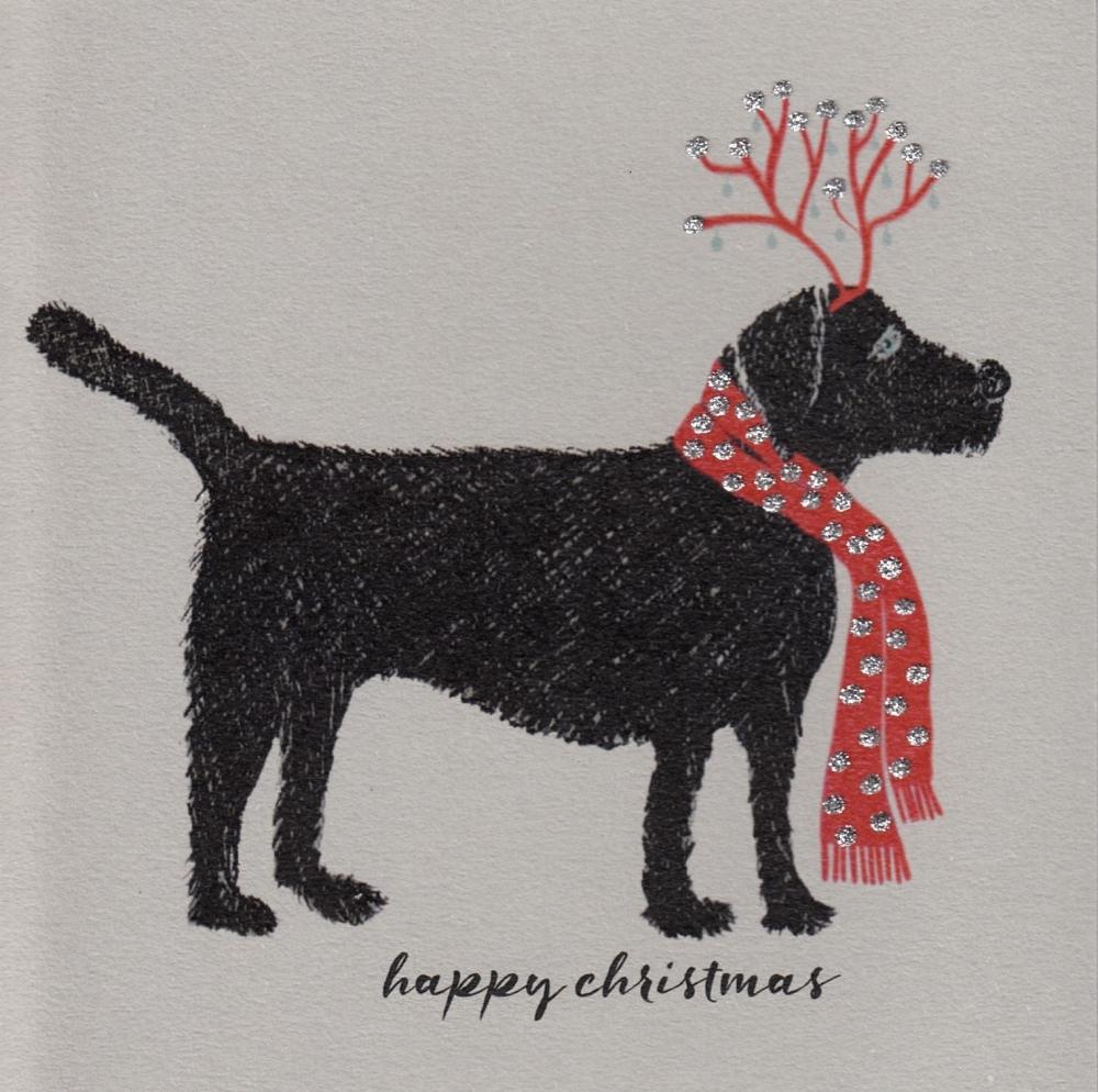 Christmas | Labrador