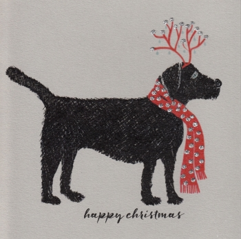 Christmas | Dog, Labrador, clay