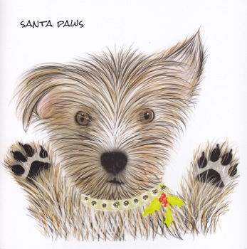 Christmas | Dog, Scruffy Paws