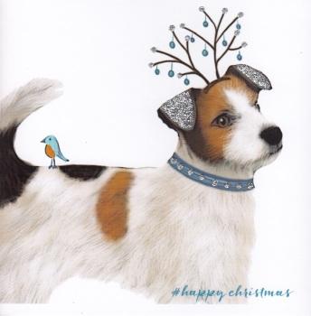 Christmas | Dog, Jack Russell 2