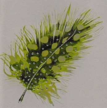 Feather | Spotted Lime, clay