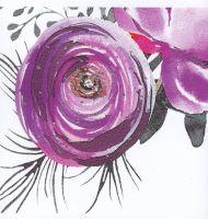 Flowers | Peony