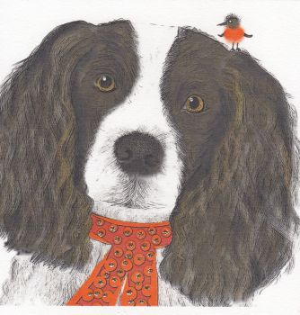 Christmas | Dog, Springer Spaniel
