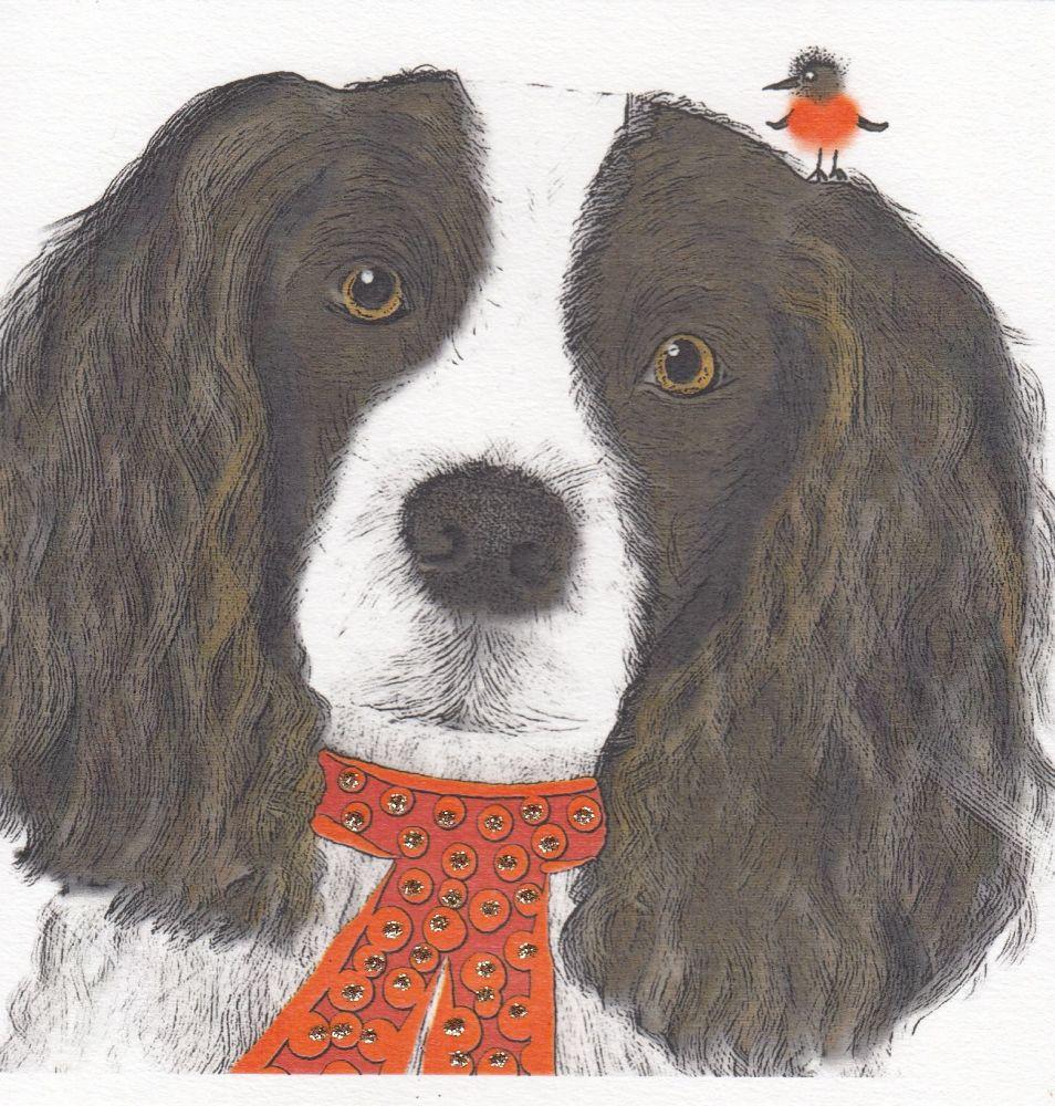 Christmas | Dog, Springer Spaniel