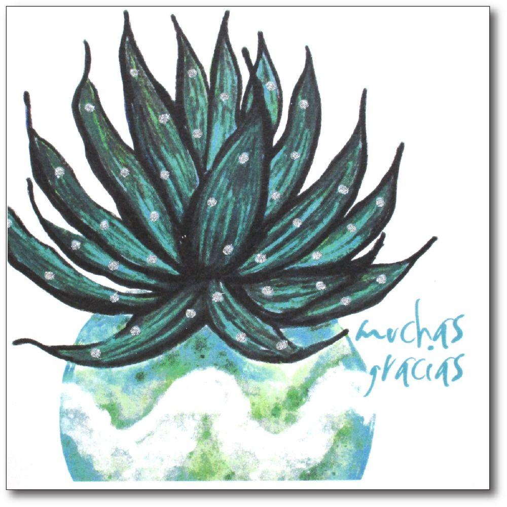 Flowers | Cactus, Muchas Gracias
