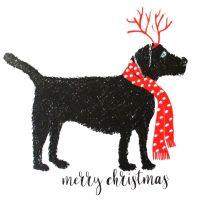 Christmas | Dog, Labrador