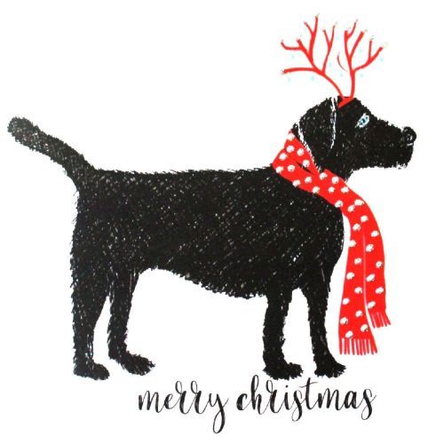 Christmas | Dog, Labrador
