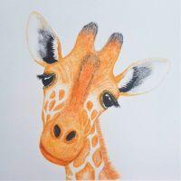 Gerry Giraffe - 454G