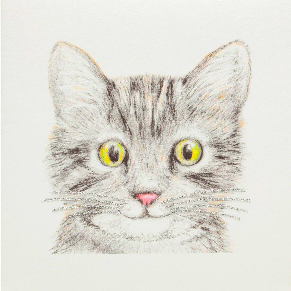 Kitty Kitten