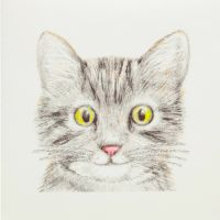 Kitty Kitten - 450G