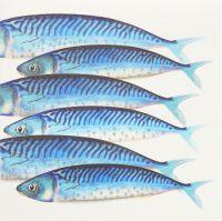 Mackerel - 05G