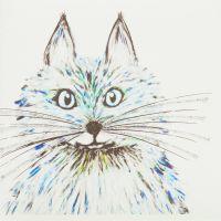 Fluffy cat blue - 381Blue
