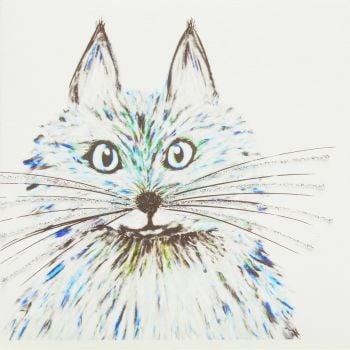 Fluffy cat blue