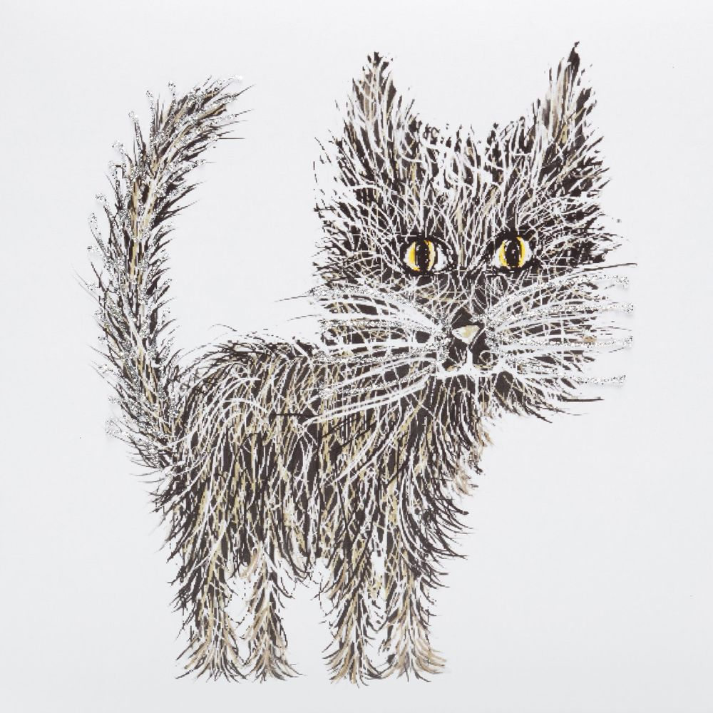 Whiskers cat