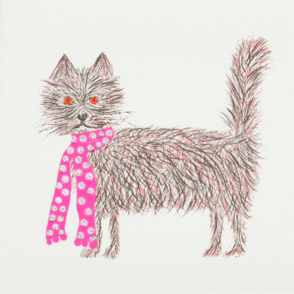 Scruffy cat pink