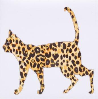 Leopard big cat - 301W